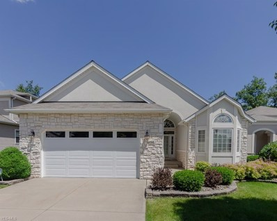 9558 Scottsdale Drive, Broadview Heights, OH 44147 - #: 4108807