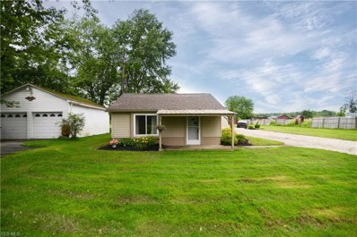 10678 Detwiler Road, Canfield, OH 44406 - #: 4108884