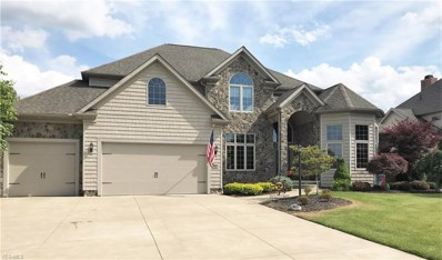 3486 Torrey Pines Drive, Fairlawn, OH 44333 - #: 4109313