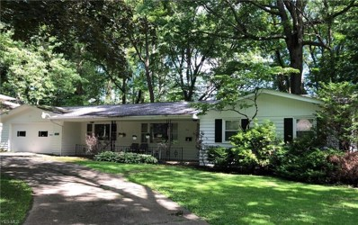 512 E Montrose Street, Youngstown, OH 44505 - #: 4109402