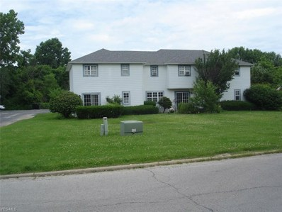 3820 Indian Run Drive UNIT 1, Canfield, OH 44406 - #: 4109675