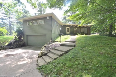 3591 Leffingwell Road, Canfield, OH 44406 - #: 4109688