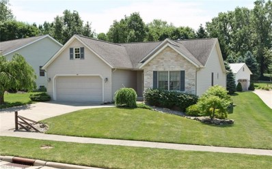 1555 Smith Drive, Wooster, OH 44691 - #: 4109918