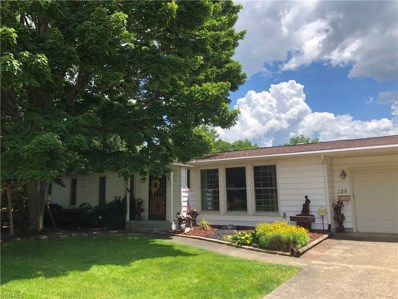 125 S Rhodes Avenue, Niles, OH 44446 - #: 4109920