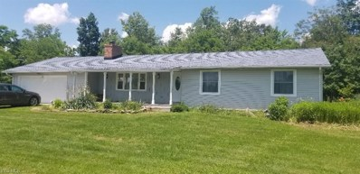5960 Ferry Road, Wakeman, OH 44889 - #: 4110012