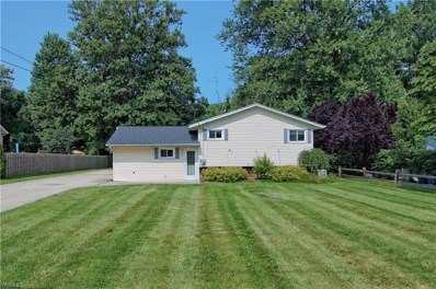 6252 Chestnut Street, Concord, OH 44077 - #: 4110076