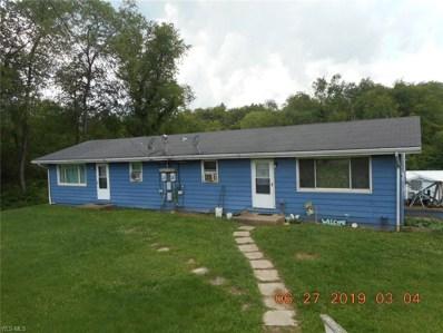 110 Magnolia Drive, New Cumberland, WV 26047 - #: 4110295