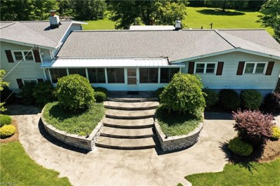 4210 River Road, Perry, OH 44081 - #: 4110594