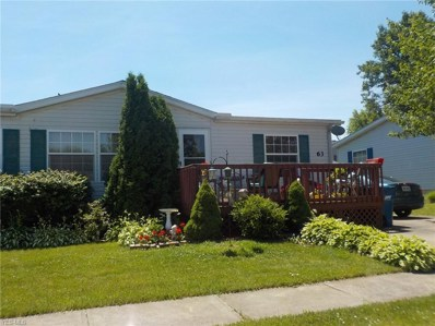 63 Mirage Avenue, Amherst, OH 44001 - #: 4111037