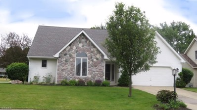 10053 Chevy Chase, Strongsville, OH 44136 - #: 4111312