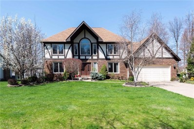 6293 Coldstream Drive, Highland Heights, OH 44143 - #: 4111385