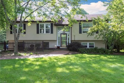 126 Mill Run Drive, Youngstown, OH 44505 - #: 4111595