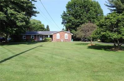 3291 Townline Road, Perry, OH 44081 - #: 4111797