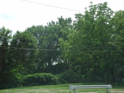 2401 Selzer Avenue, Cleveland, OH 44109 - #: 4112552