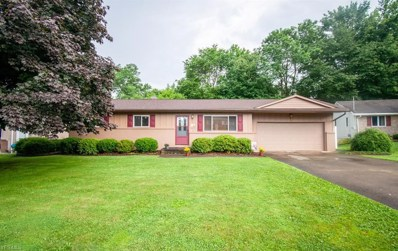3103 Louise Rita Court, Youngstown, OH 44511 - #: 4112686