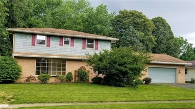 252 Falk Avenue, Wadsworth, OH 44281 - #: 4112760