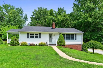 8755 Spring Valley Drive, Mentor, OH 44060 - #: 4112799