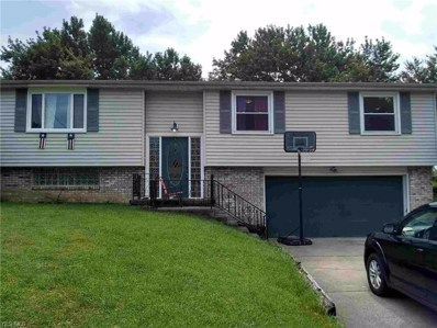276 Marshall Street, Champion, OH 44483 - #: 4112826