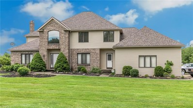 489 Medway Road, Highland Heights, OH 44143 - #: 4112896