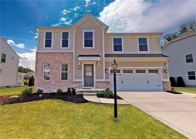 9256 Forest Lake Trail, Olmsted Township, OH 44138 - #: 4112949