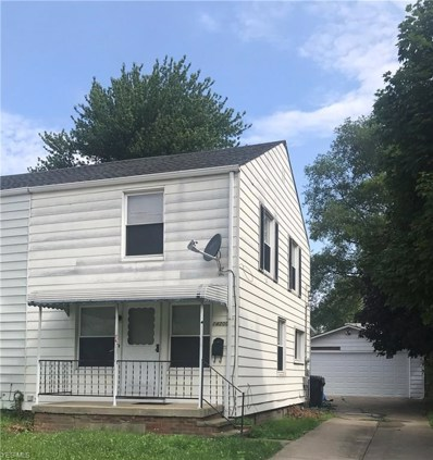 14200 Rainbow Avenue, Cleveland, OH 44111 - #: 4113016