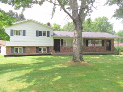 440 Fritsch Avenue, Akron, OH 44312 - #: 4113111