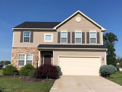 3143 Seven Bridges Road, Medina, OH 44256 - #: 4113118