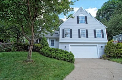 1677 Newport Cove, Twinsburg, OH 44087 - #: 4113157