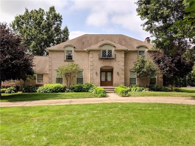 3935 Fairway Drive, Canfield, OH 44406 - #: 4113203