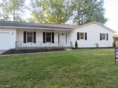620 Nelson Street, Elyria, OH 44035 - #: 4113316