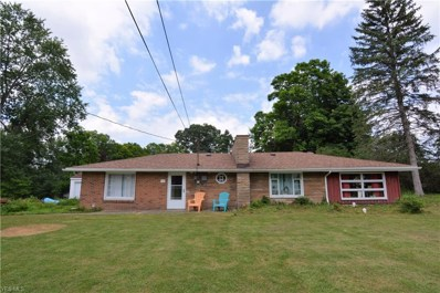 558 Lessig Avenue, Akron, OH 44312 - #: 4113670