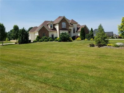 1740 Old Windmill Trail, Valley City, OH 44280 - #: 4113865