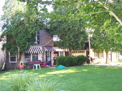 166 Hickory Street, Andover, OH 44003 - #: 4113949
