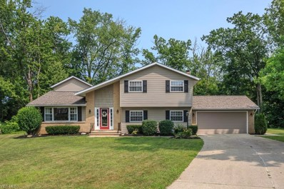 10275 Cherry Hill Drive, Concord, OH 44077 - #: 4114182