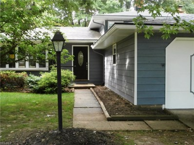 7222 Enfield Drive, Mentor, OH 44060 - #: 4114570