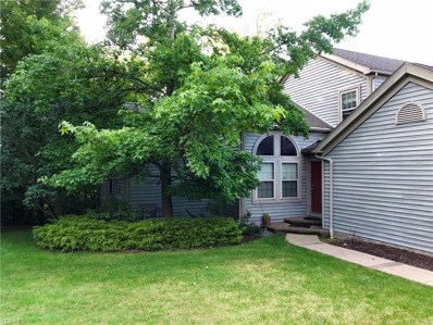 6525 Saint Andrews Drive UNIT 1, Canfield, OH 44406 - #: 4114587