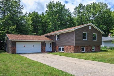 8620 Forestview Avenue, Mentor, OH 44060 - #: 4114818