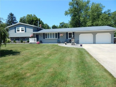 6420 Oberlin Road, Amherst, OH 44001 - #: 4114989