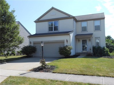 9613 Taberna Lane, Olmsted Township, OH 44138 - MLS#: 4115088