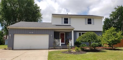 5230 Jamestown Place, Lorain, OH 44053 - #: 4115276
