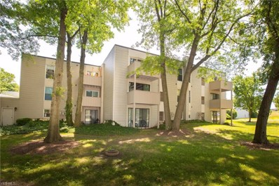 1633 Cedarwood Drive UNIT 321, Westlake, OH 44145 - #: 4115303