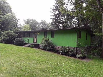 12536 Amber Circle NW, Uniontown, OH 44685 - #: 4115368