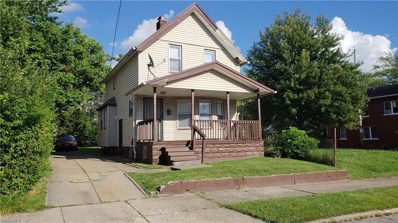 3631 E 118th Street, Cleveland, OH 44105 - #: 4115407