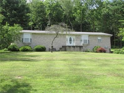 1966 County Road 36, Bloomingdale, OH 43910 - #: 4115945