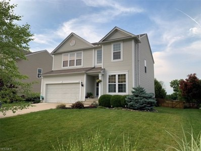 5431 Royal Brook Drive, Medina, OH 44256 - #: 4116191