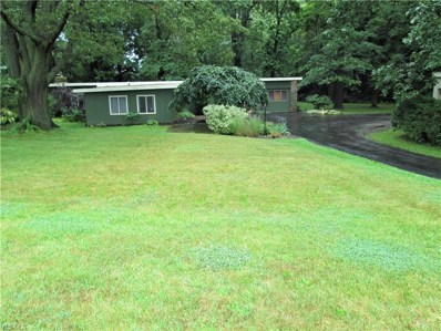 3031 Burbank Road, Wooster, OH 44691 - #: 4116230