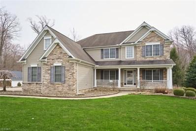 10806 Ellison Creek Drive, Concord, OH 44077 - #: 4116522