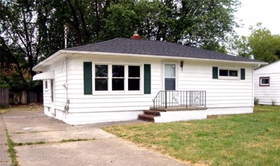 1334 Maryland Avenue, Lorain, OH 44052 - #: 4116529
