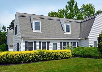 8080 Harbor Creek Drive UNIT 301, Mentor-on-the-Lake, OH 44060 - #: 4116951