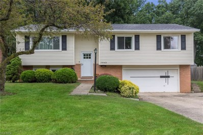 7943 Linden Street, Mentor-on-the-Lake, OH 44060 - #: 4117128